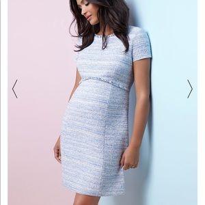 Sky blue Seraphine maternity dress size 4 NWT